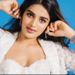 Nidhi Agerwal Wikipedia, Biography
